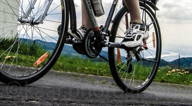 Bike Tour Giselawarte