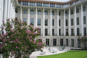 Roberto C. Goizueta Business School, August 2008